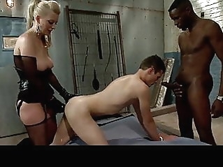 anal bisexual femdom at vPorn
